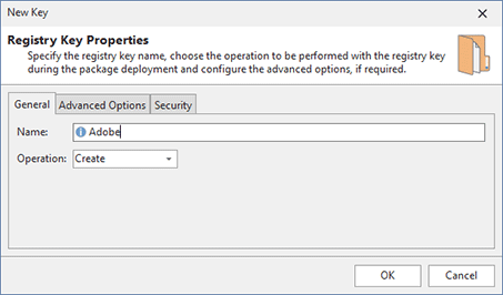 Adding a registry key modification to a project